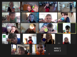 Zoom-Training Mini2_Maxi2